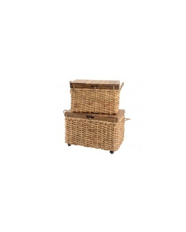 Trunk Wicker G